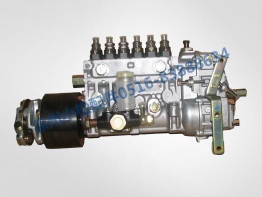 S6D125高压泵